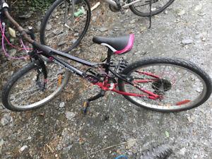 Vélo louis Garneau 24