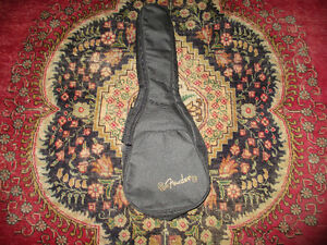 Fender Mandolin Cloth Gig Bag Kitchener / Waterloo Kitchener Area image 2