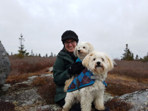Looking for a dog sitter in Purcell's Cove