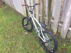 "20"" GT BMX with Pegs"