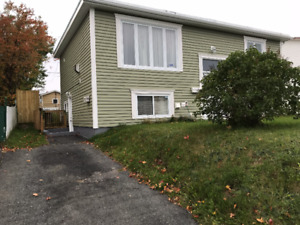 One Bedroom Apartment Available for Rent in St. John's