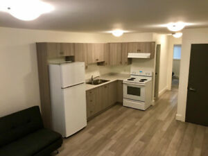 New 1 bedroom suite in Langford for rent.