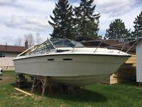 Boat for sale!
