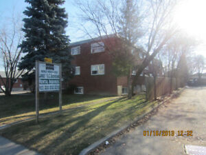 HURRY!! - LARGE & BRIGHT 2 Bedroom - Recently Renovated