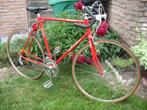 Rare Continental Team LX 12 Speed Road Racer
