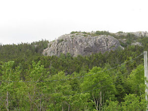 26-28 CROSS MEADOW, I ACRE BOREAL FOREST...CBS. St. John's Newfoundland image 7