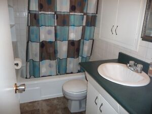 Unique Apartment Located Just Outside White City Regina Regina Area image 4