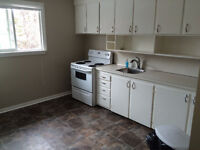 2 Bdrm by College of Nurses, pets welcome, Free iPad