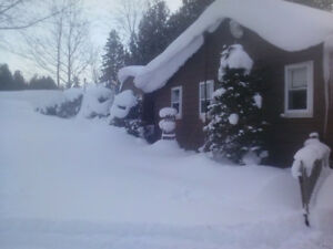 Daily or week vacation in cottage country, snowmobiling, skiing.