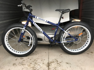 Maple Leafs Fat Tire Bicycle