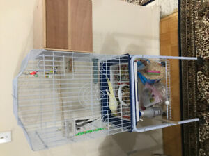 Beautiful bird cage for sale with nest box