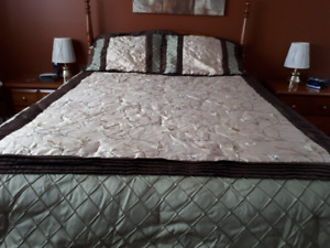 Queen size Comforter, bed skirt, pillow shams, and curtains