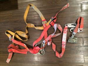 Protecta AB101C Harness