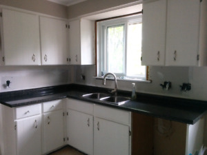 Counter top includes double sink with 2 small counter pieces