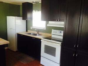 1 Bedroom Fully Renovated Mini Home for Rent