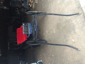 2 Seated Horse buggy for Sale with Harness