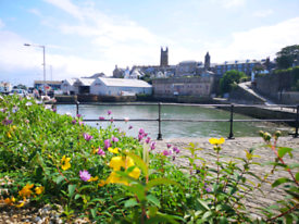 Property wanted to rent in Cornwall