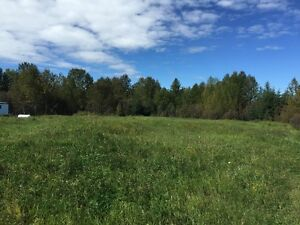 County Acreage / Great hunting spot