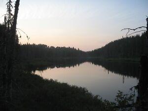 2 LOTS POUR CHASSEUR ou PROMOTEUR Saguenay Saguenay-Lac-Saint-Jean image 8