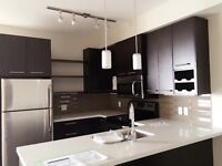 BRAND NEW 2 bedroom condo 10418 81 ave close to UA and whyte ave