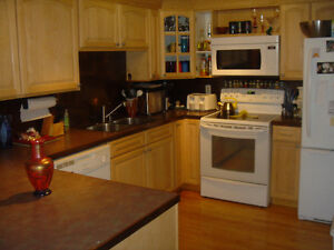 Bungalow upper suite for rent, estate home in Canyon Meadows SW