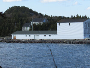 200 FT OCEANFRONT PROPERTY..COLLIERS, OPPORTUNITY KNOCKS! St. John's Newfoundland image 6