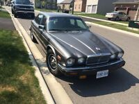 1986 V12 Jaguar Classic Excellent Condition
