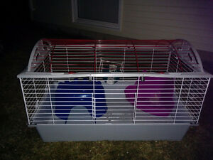 A NEW RABBIT CAGE
