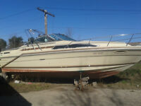 SeaRay  27 Ft Twin Chevy's 500 hours!!