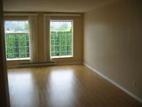 2BD, Bright, Open with large windows, Available Sept 1