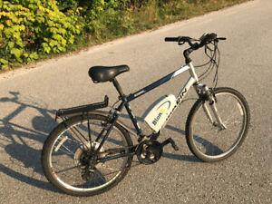 Electric bike BionX 350
