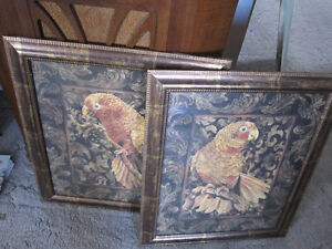 Framed Parrot Pictures--Brand New