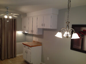 APARTMENT (2 bed)  IN ILE BIZARD, NEW BATHROOM AND RENOS!