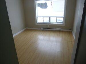 logement 4 1/2 à louer 550.0 $/mois chauffé éclairé jonquière Saguenay Saguenay-Lac-Saint-Jean image 4
