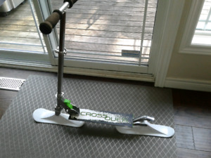 Scooter interchangeable skis and wheels!