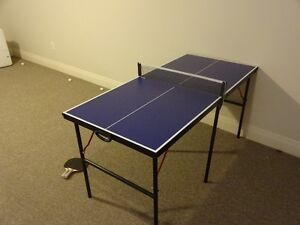 Table Tennis table with 2 paddles