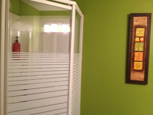 Two Bedroom Apt For Rent; 15 minutes from Long Harbour Site St. John's Newfoundland image 6