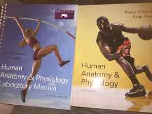 A&P textbook and lab manual