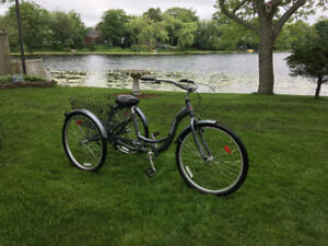 adult trycycle