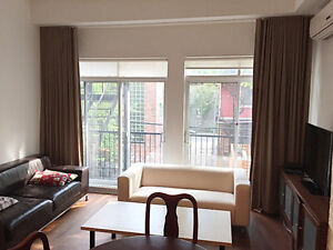 Furnished 3 bedroom next to McGill University (includes wifi)