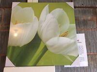 Tulip picture set - 2 single ones and a set of 3