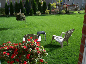 NEW! LAWN MOWING SERVICES - ACCEPTING NEW CLIENTS Cambridge Kitchener Area image 1