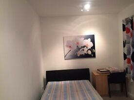 Double room Single use in a family £450pcm (monthly)