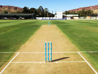 Cricketer wanted Cricket players needed play midweek Wed/Thurs or Sat/Sun Regular or Social Friendly