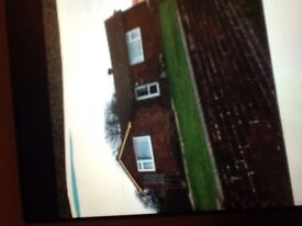 3 bed bungalow for rent south Norfolk