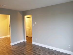 Newly renovated 3 bedroom main floor apartment