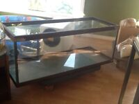 Custom aquariums and repairs