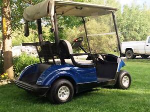 ~ The Golf Cart Guy ~ 2011 YAMAHA ELECTRIC GOLF CART