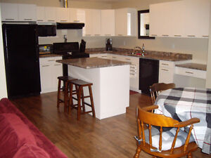 Short Term Rental 3-6 mos - Available May 01st, 2017