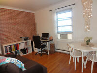 Milton-Parc/McGill campus zone- 1 bedroom apt- available Oct. 1